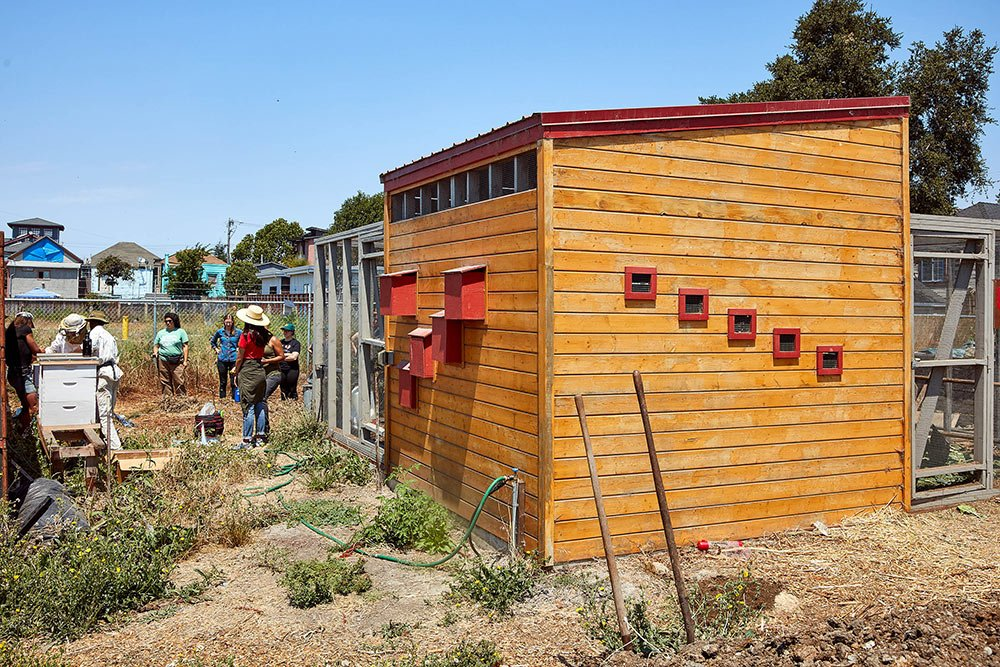 City Slickers Farm-Oakland, CA-Lowney Architecture-11